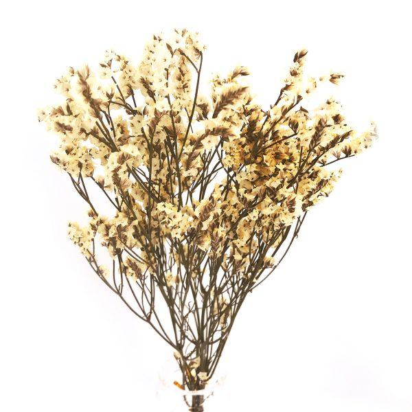 黃色水晶草乾花
