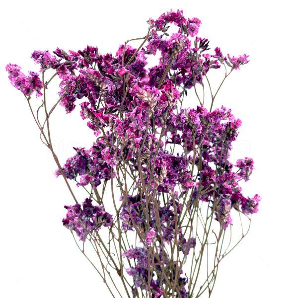 紫色水晶草乾花