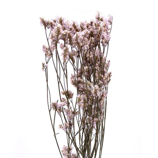 灰紫色水晶草乾花