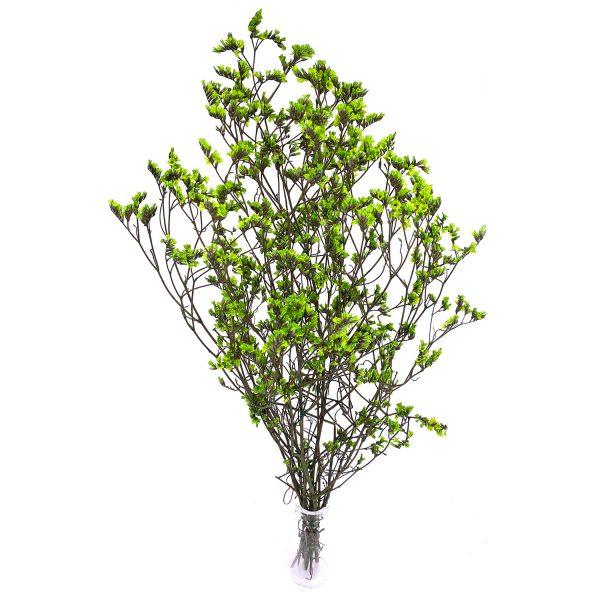 綠色水晶草乾花花束