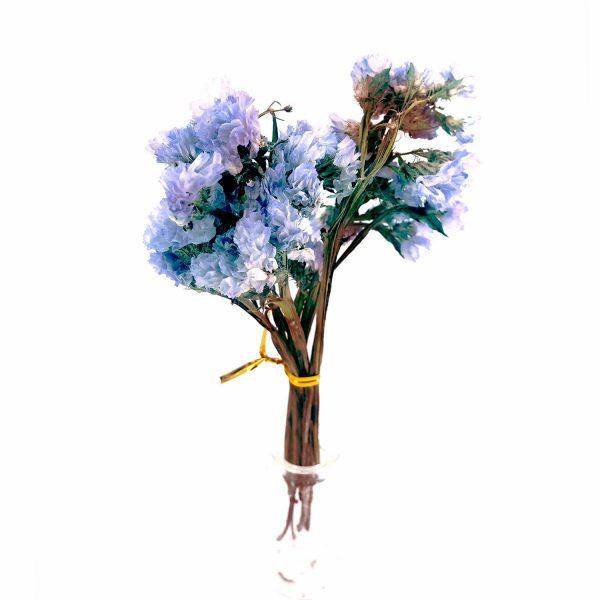 淺藍色勿忘我小束乾花