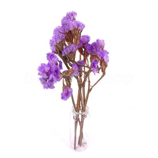 淺紫色勿忘我小束乾花