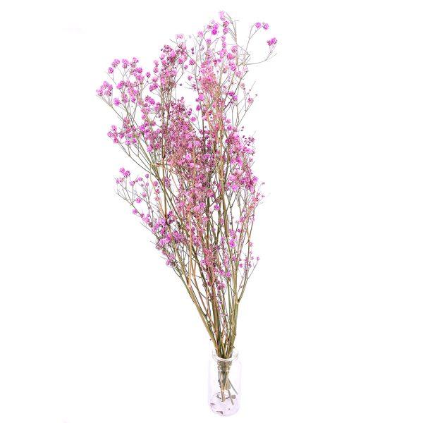 粉紅色滿天星乾花花束