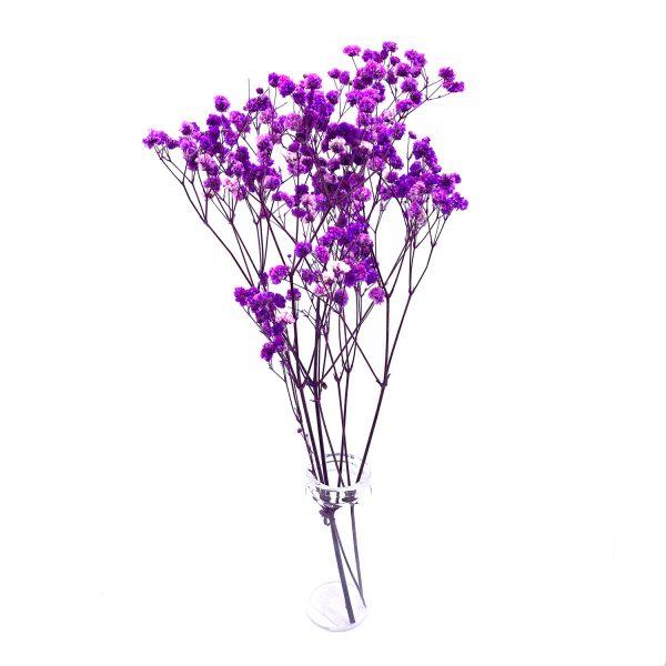 紫色滿天星乾花花束