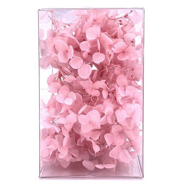 繡球花保鮮花-淺粉紅