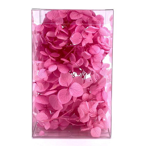 繡球花保鮮花-玫瑰紅色