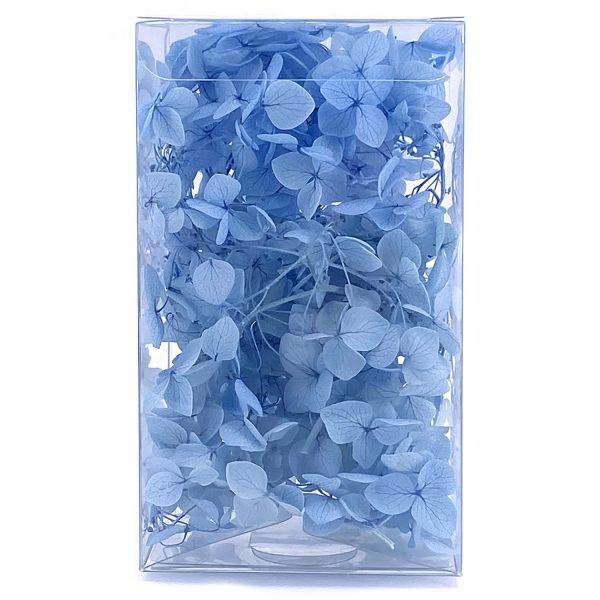 繡球花保鮮花-藍色