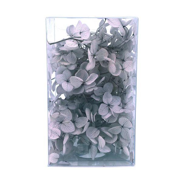 繡球花保鮮花-淺灰色