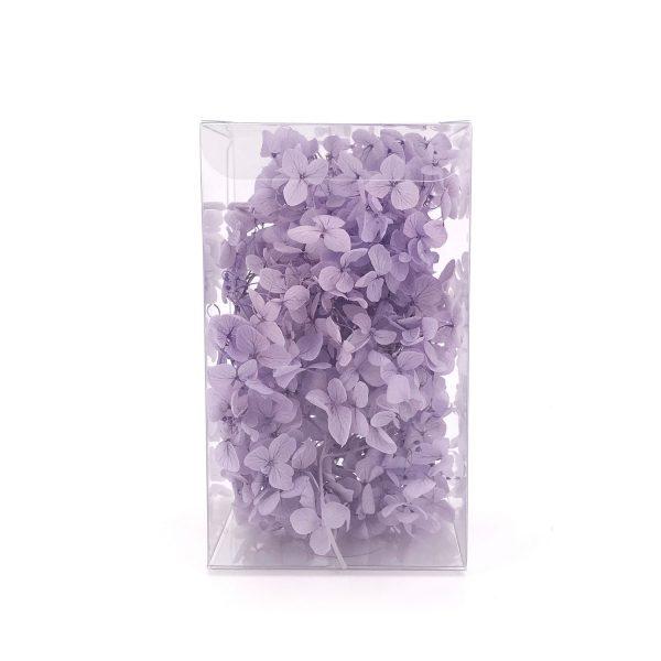 繡球花保鮮花-淺紫色
