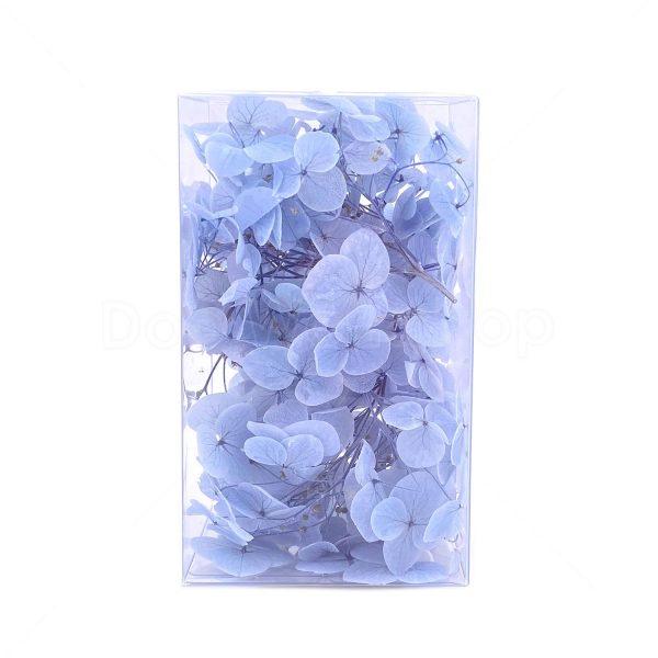 繡球花保鮮花-天藍色