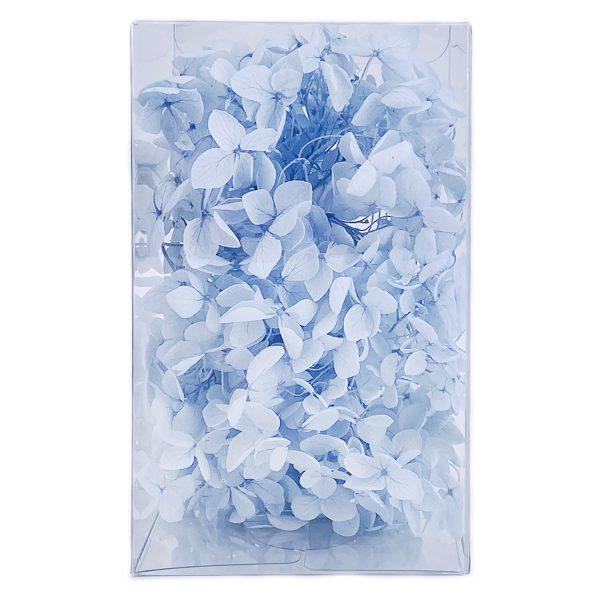 繡球花保鮮花-淺藍