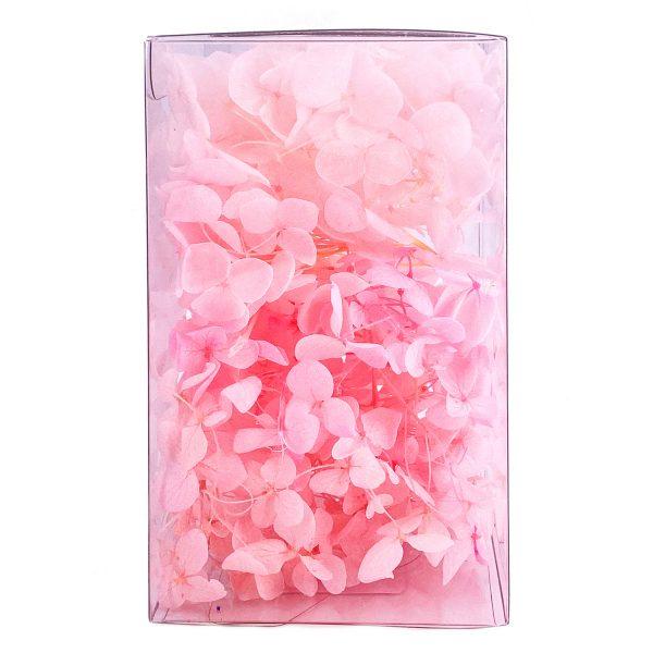 繡球花保鮮花-櫻花粉