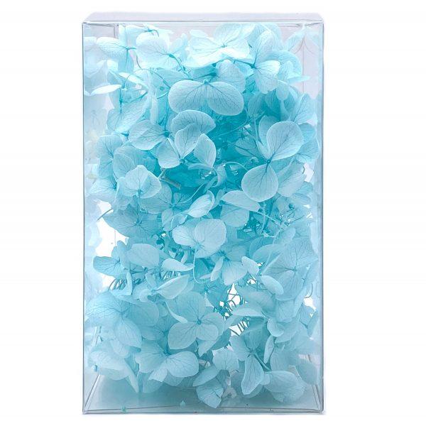 繡球花保鮮花-蒂芙尼藍