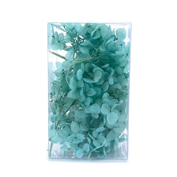 繡球花保鮮花-湖水綠
