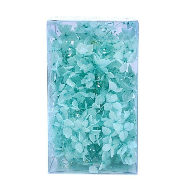 繡球花保鮮花-淺綠