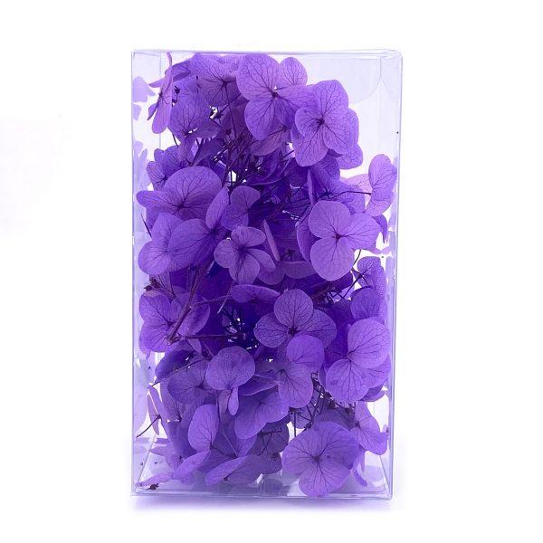 繡球花保鮮花-葡萄紫