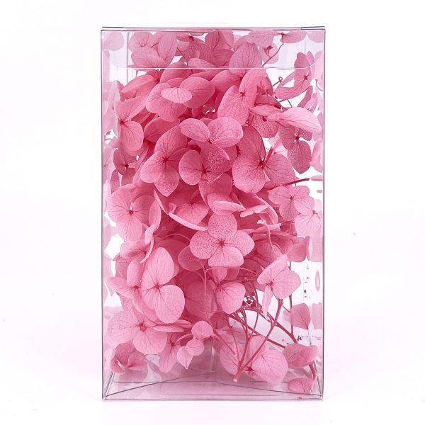 繡球花保鮮花-粉紅色
