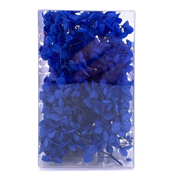 繡球花保鮮花-深藍色