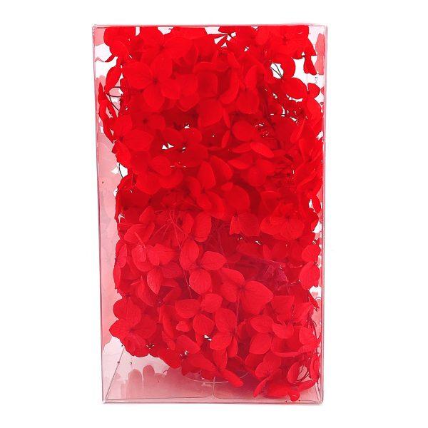 繡球花保鮮花-紅色