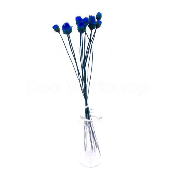 藍色快樂花乾花