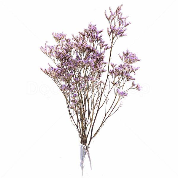 紫色情人草乾花