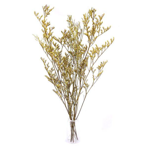 黃色情人草乾花花束