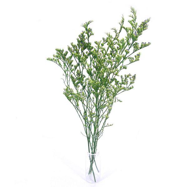 綠色情人草乾花花束