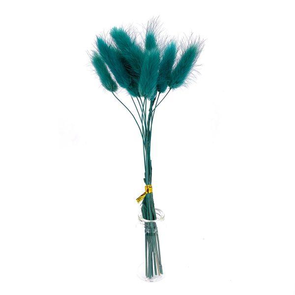 深綠色鼠尾草乾花