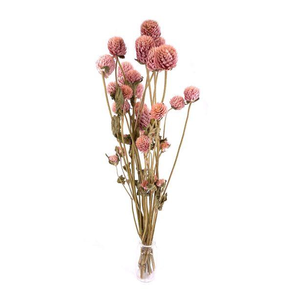 紅巧梅乾花花束