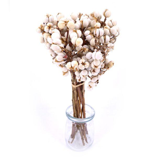 小白果乾花花束