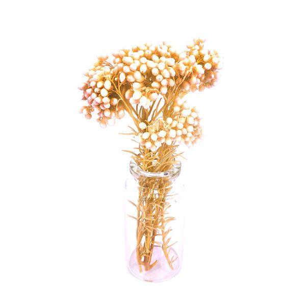 白色小米花乾花