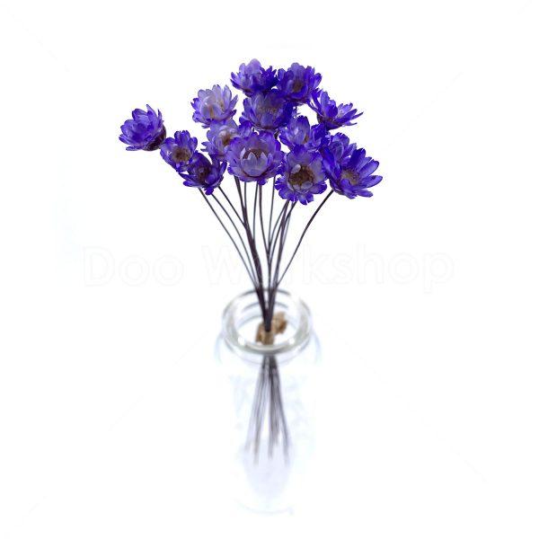 深紫色小星花乾花