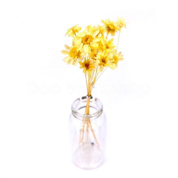日本黃色小星花乾花