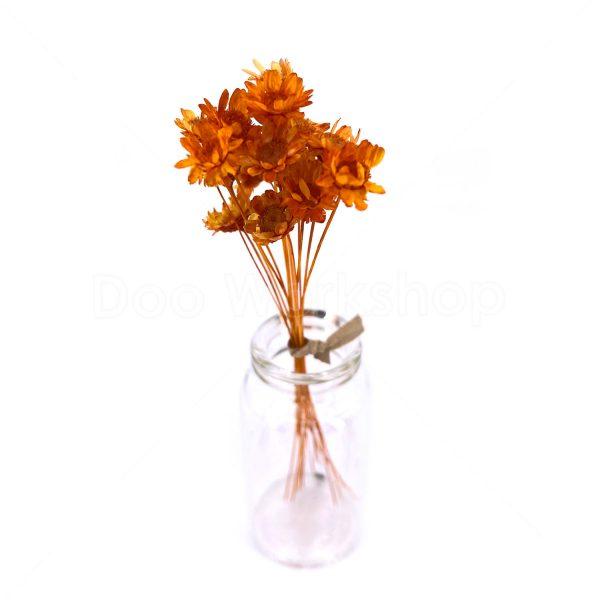 日本橙色小星花乾花