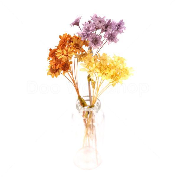 三色(黃,橙,紫)小星花乾花