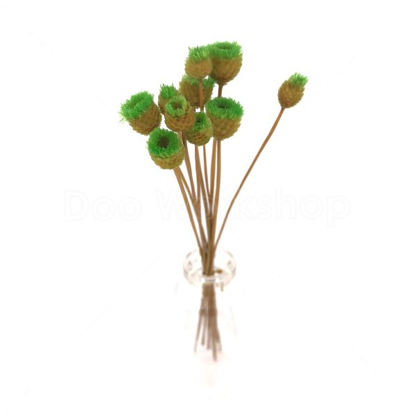 綠色快樂花乾花