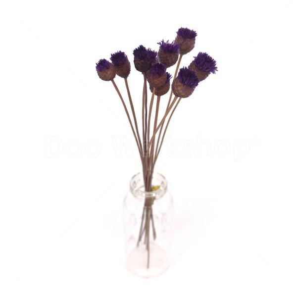 紫色快樂花乾花