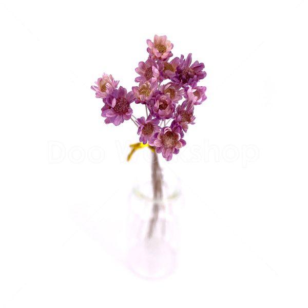 紫色小星花乾花