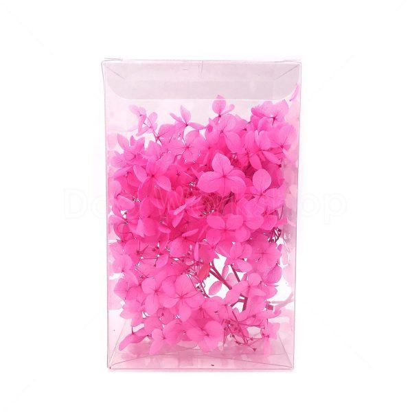 繡球花保鮮花-鮮粉紅色
