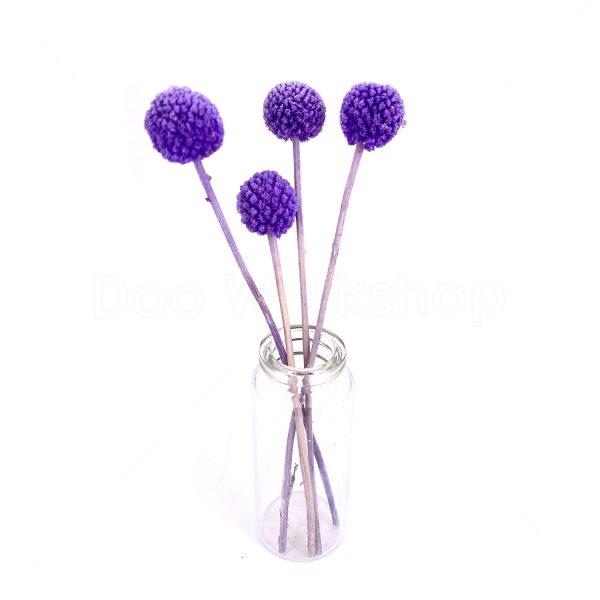 紫色黃金球乾花-小號