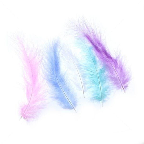 馬卡龍色尖尾絨羽毛