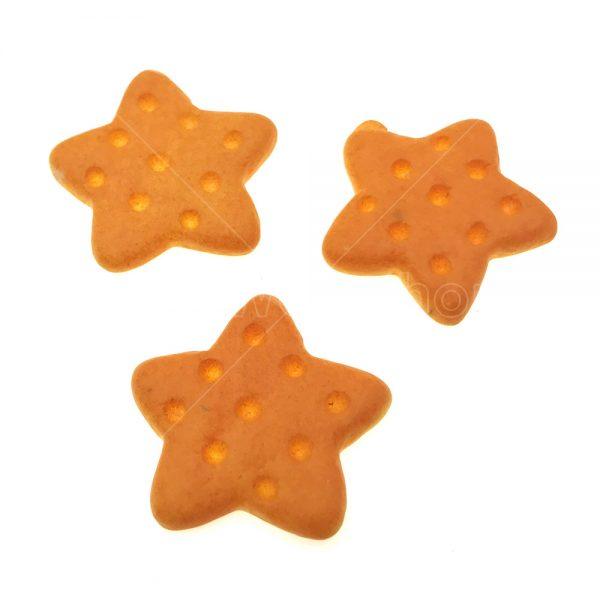 星形餅乾樹脂裝飾