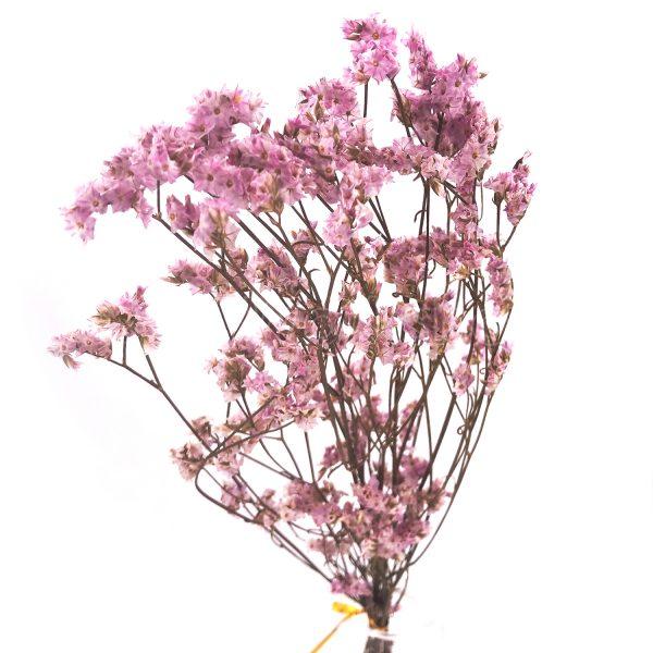 粉紅水晶草乾花
