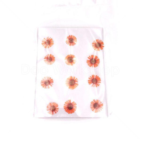 橙色針菊乾花押花